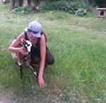 ľúbime naše zvieratká